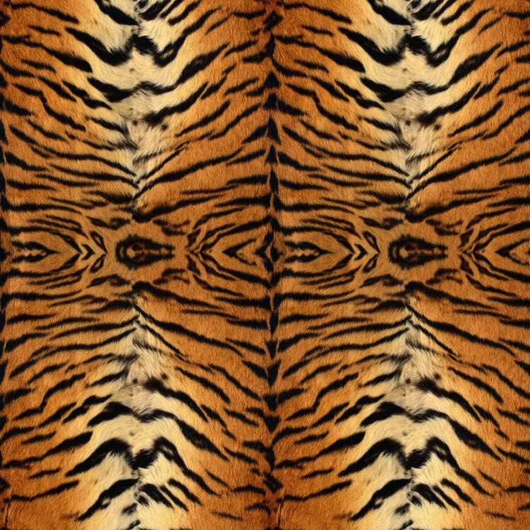 Tiger Stripes Pattern Custom Tiger Pattern