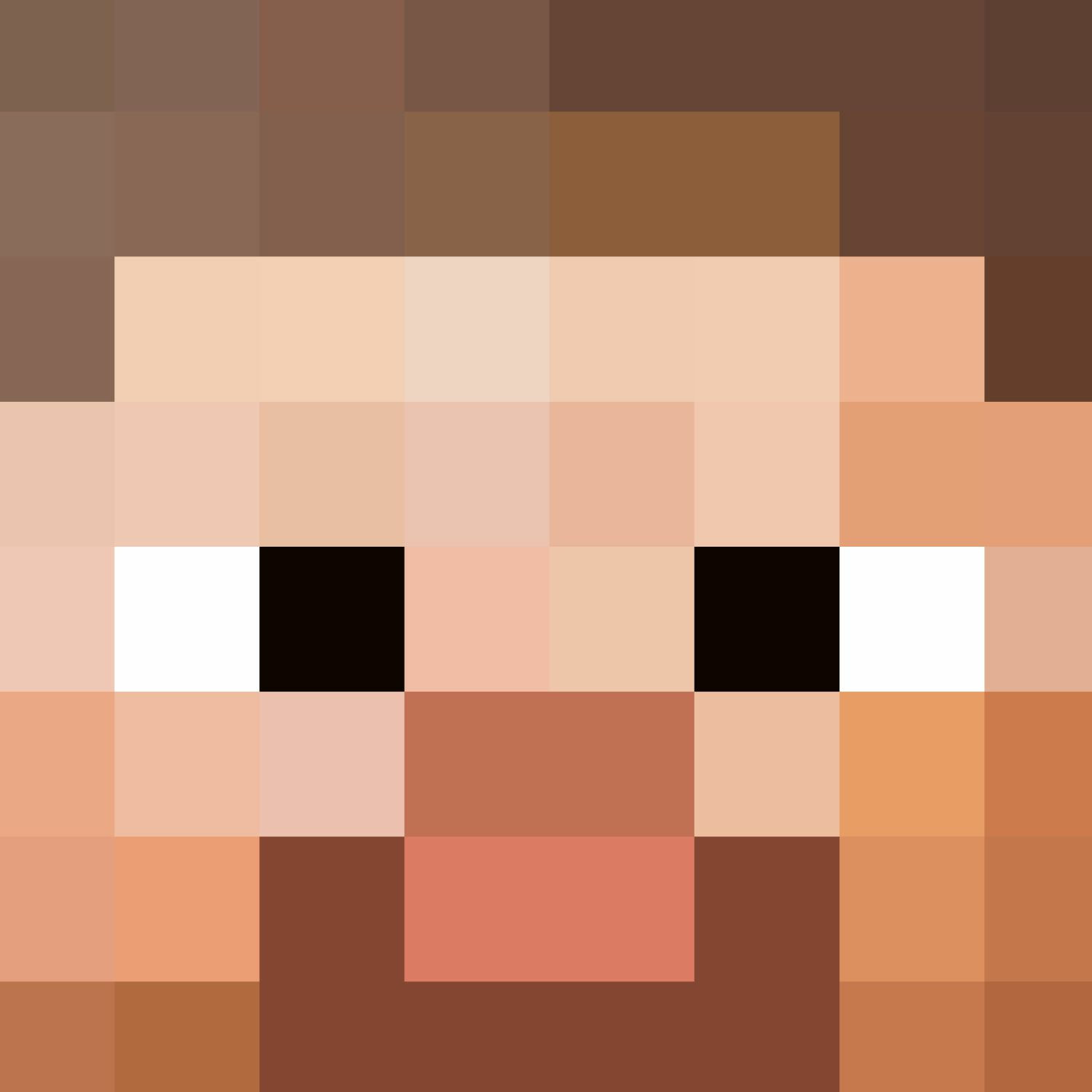 Minecraft Steve Head Pattern